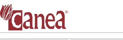 Canea Artykuły Dekoracyjne Suszone Rośliny Sztuczne